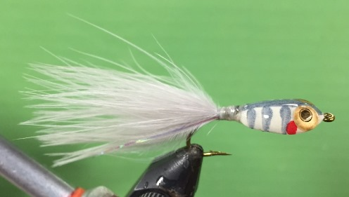 Backwoods Fly Tying–Tacit Minnow