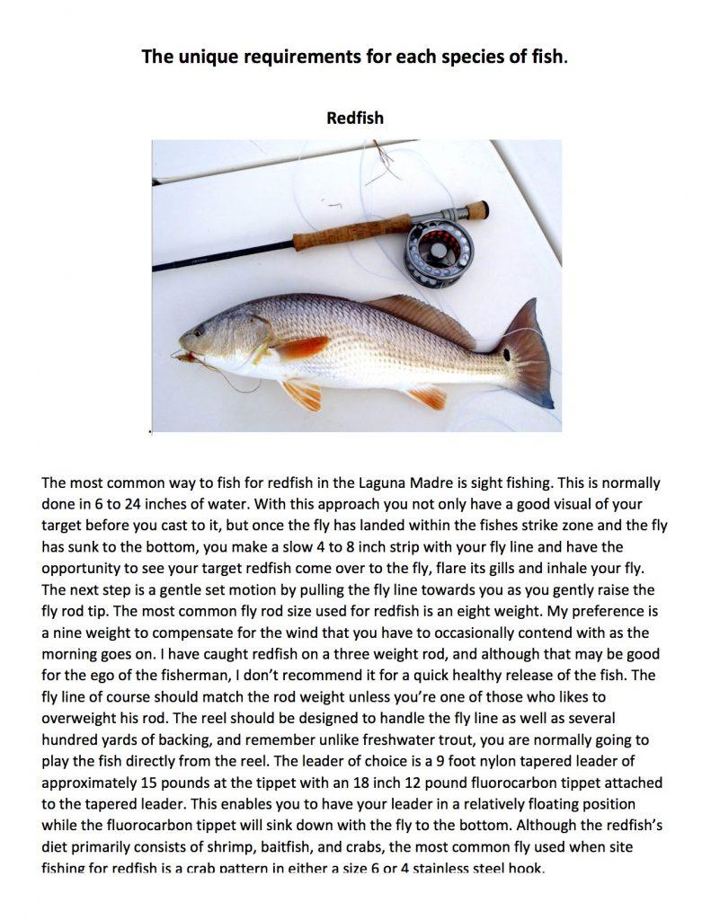 coastal salt water fishing presentation2