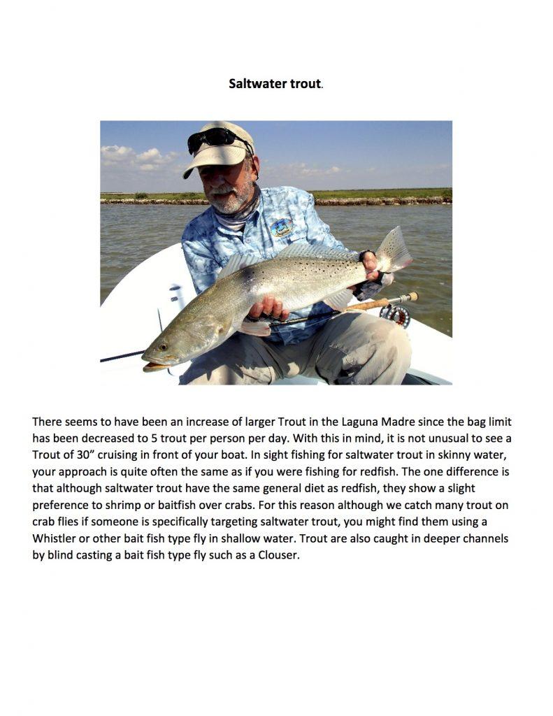 coastal salt water fishing presentation3