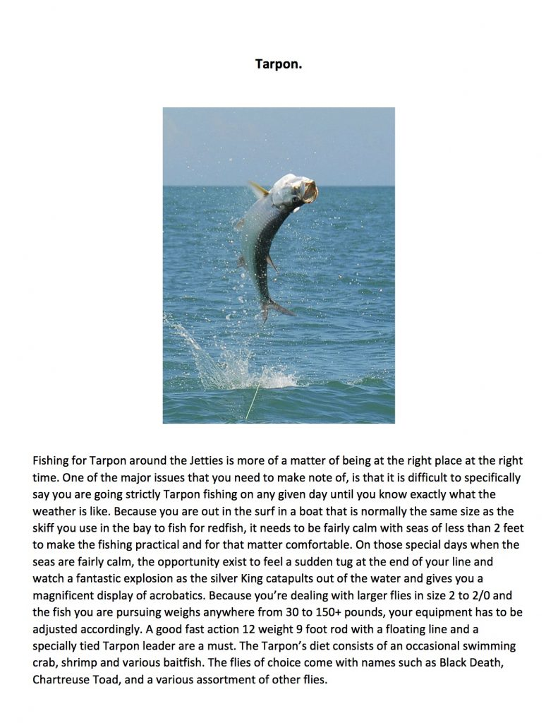 coastal salt water fishing presentation5