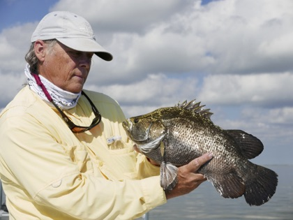 Explore Florida saltwater fishing with Steve Bailey