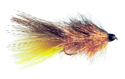CANCELED: Fly-tying class with Spencer Seim