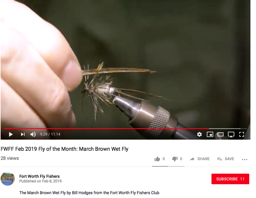 Special edition: Fly of the Month on YouTube